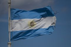 Het Argentijnse golven van de Vlag Royalty-vrije Stock Foto's
