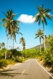 Het asfaltweg van Nice met palmen stock afbeeldingen