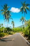 Het asfaltweg van Nice met palmen royalty-vrije stock fotografie