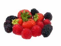Het Assortiment van het fruit Royalty-vrije Stock Foto