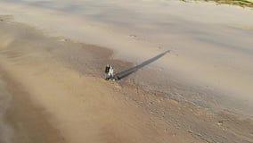 Het Atlantische kuststrand is de stad van Tarifa Spanje, golvenbranding en zandig strand bij zonsondergang Leeg strand in de wint stock footage