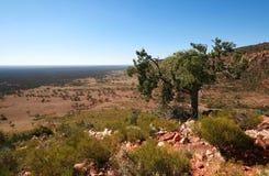Het Australische binnenland Royalty-vrije Stock Foto