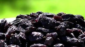 Het Australische sultanarozijn-gedroogd fruit van druivenrozijnen, het alternatief van de gezonde voedingsnack, het omcirkelen stock videobeelden
