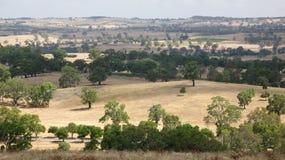 Het autralian landschap van het zuiden Stock Afbeeldingen
