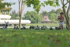 Het Aziatische babyjongen Spelen in park Stock Afbeeldingen