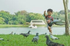 Het Aziatische babyjongen Spelen in park Stock Afbeelding