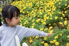 Het Aziatische Chinese meisje stellen naast Bellis-perennisgebied royalty-vrije stock fotografie