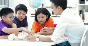 Het Aziatische leraar uitbreiden zich aan student in anatomieklasse met skeletmodel stock videobeelden