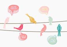 Het babbelen vogels op draden Stock Afbeeldingen