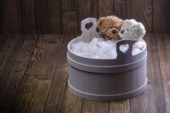Het bad van het teddyberenschuim Stock Afbeelding