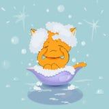 Het baden katje Stock Fotografie