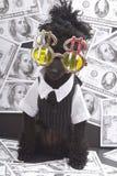 Het Baden van de poedel in Contant geld Stock Foto's