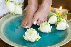Het badmassage van de voet met kruiden en bloemen Stock Foto's