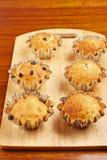 Het bakken cupcakes in manden Royalty-vrije Stock Afbeelding