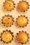 Het bakken cupcakes met rozijnen Stock Fotografie