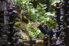 Het Balinese vrouwen bidden stock foto