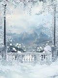 Het balkon van de winter met wijnstokken Stock Afbeelding