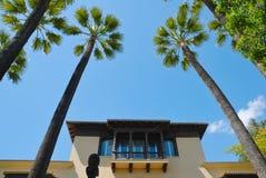 Het balkon van palmen Stock Afbeelding