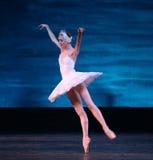 Het ballet van het Meer van de zwaan dat door Russisch Koninklijk Ballet wordt uitgevoerd royalty-vrije stock foto