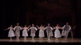 Het ballet van het Meer van de zwaan stock footage
