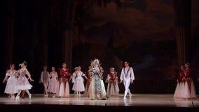Het ballet van het Meer van de zwaan stock video