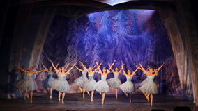 Het ballet van Moskou stock footage