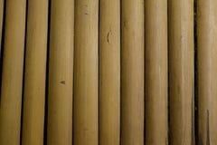 het bamboe Royalty-vrije Stock Afbeeldingen