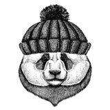 Het bamboe draagt Panda Koel dier die gebreide de winterhoed dragen Warme hoofddeksel beanie Kerstmis GLB voor tatoegering, t-shi royalty-vrije illustratie