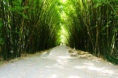 Het is Bamboeboog in Wat Chulapornwanaram, nieuwe beroemde touris stock afbeelding
