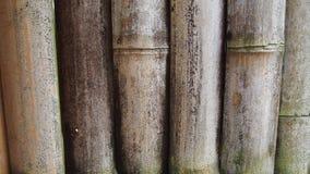 Het bamboescherm Stock Afbeeldingen