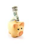 Het bankbiljet van de dollar in een geïsoleerde spaarvarken op wit Stock Foto's