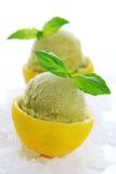 Het basilicumsorbet van de citroen Stock Afbeeldingen