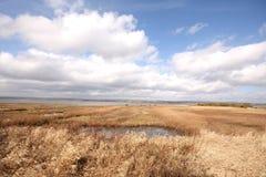 Het Bassin van Montrose royalty-vrije stock foto's
