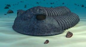 Het batist trilobite geeft terug Royalty-vrije Stock Afbeeldingen
