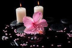 Het Beautiful spa plaatsen van roze hibiscus, kaarsen, zen stenen Stock Fotografie