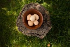 Het bebouwde beeld van de ruwe eieren van de landbouwbedrijfkip schikte in een plaat op een houten boomstam Horizontaal beeld Bio royalty-vrije stock foto's