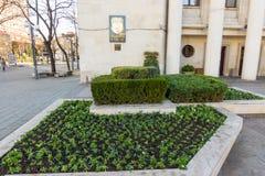 Het bed van de de winterbloem dichtbij de beleid bouw van Burgas in Bulgarije Royalty-vrije Stock Afbeeldingen