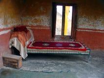 Het bed van de Lama Stock Afbeeldingen