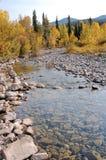Het bed van de rivier Stock Foto's