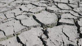 Het bed van het meer opdrogen wegens droogte stock video