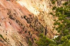 Het bed van Yellowstonegrand canyon voor de Yellowstone-rivier, het Nationale Park van Yellowstone, de V.S. royalty-vrije stock foto