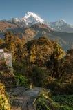 Het bedekte sleepnoorden van Ghandruk, Nepal, die tot Annapurna-Zuiden leiden stock afbeeldingen