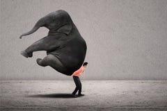 Het bedrijfsleider opheffen olifant op grijs stock foto