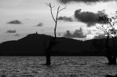 Het beeld, de boom en de berg van Boedha van de Sillohuetteschaduw Stock Foto
