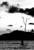 Het beeld, de boom en de berg van Boedha van de Sillohuetteschaduw Stock Afbeeldingen