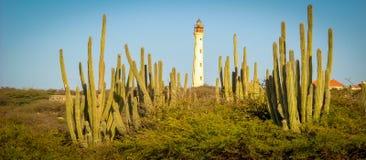 Het Beeld van Aruba met de Vuurtoren en de Rotsen van Californië in voorgrond Royalty-vrije Stock Foto