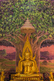 Het beeld van Boedha Stock Foto
