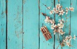 Het beeld van de lente witte kers komt boom naast houten kleurrijke potloden op blauwe houten lijst tot bloei wijnoogst gefiltree Royalty-vrije Stock Afbeeldingen