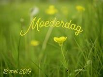 Het beeld van de moedersdag met het woord moederdag in het Nederlands met gele bloemen stock illustratie