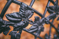 Het beeld van een decoratieve van de gietijzeromheining en herfst sinaasappel gaat weg als achtergrond Royalty-vrije Stock Foto's